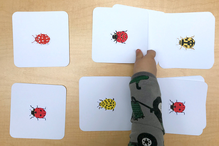 Matching ladybugs at How we Montessori  Otto 22 months