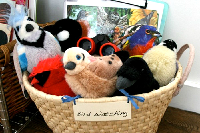 Playful Learning Bird Watching Basket-2