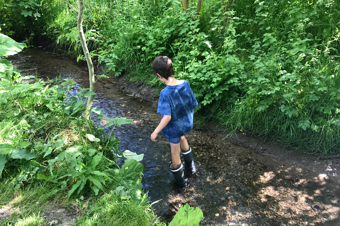 Otis pond dipping at How we Montessori nature reserve at 8 years