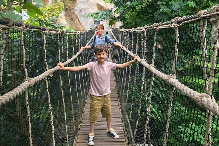 Caspar and Otis on suspension bridge at Eden Project at How we Montessori May 2019