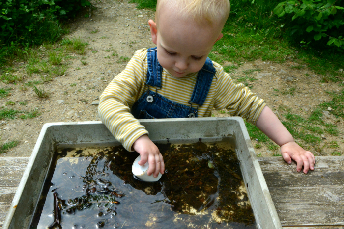 Otto pond dipping at How we Montessori 20 months May 2019