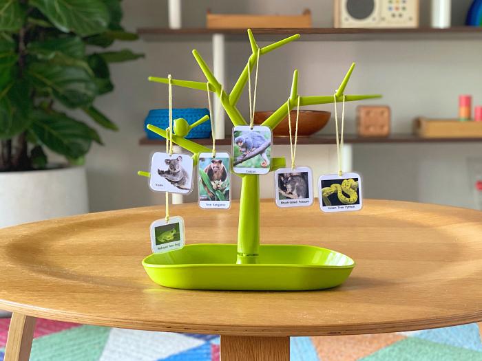 Montessori Materials Language Tree at How we Montessori toddler activity two year old Australian animals