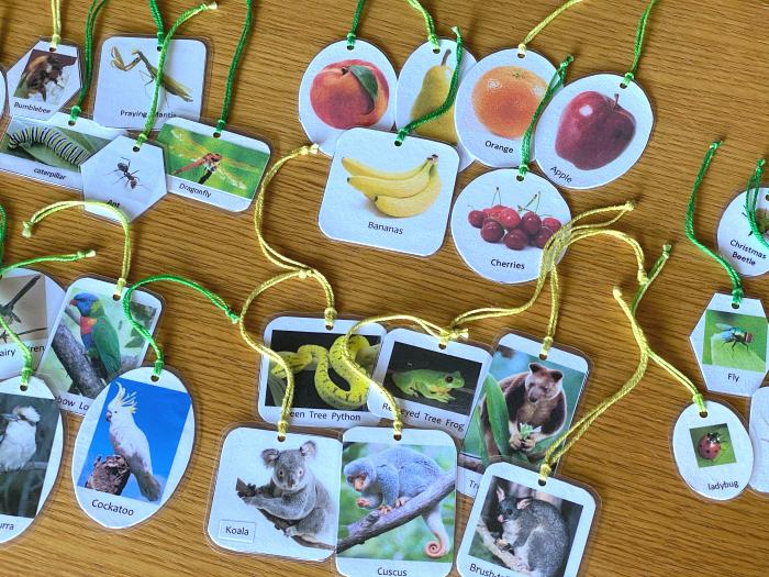 Language tree animals and fruits at How we Montessori toddler work Sydney