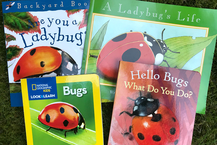 Ladybug books for toddlers at how we montessori