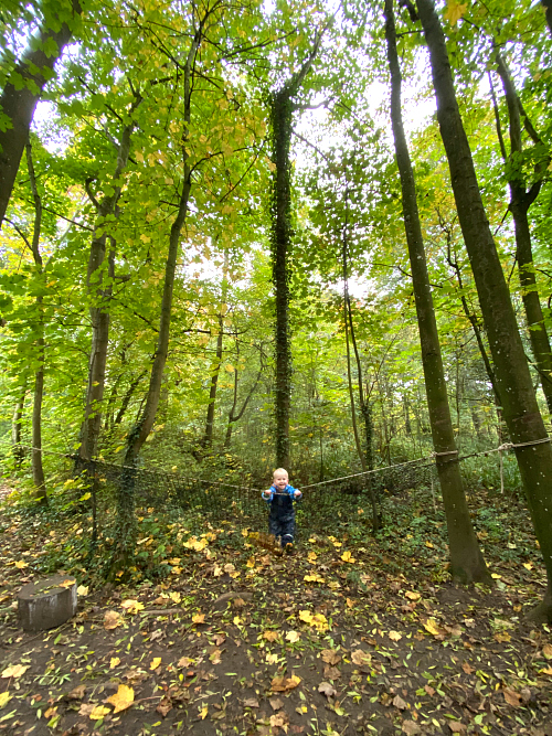 Forest Bathing  Toddler forest school at How we Montessori  25 months
