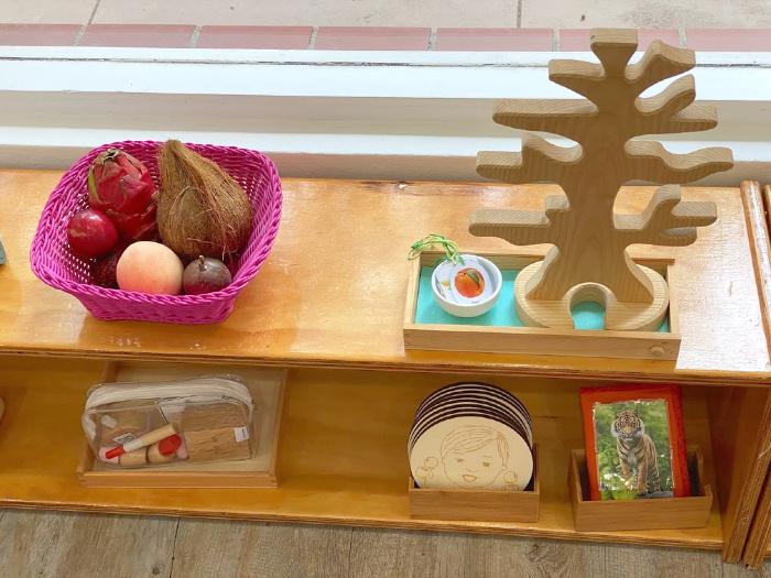 How we Montessori visits North Sydney Montessori Parent Toddler Class with Peta Gibson (1)