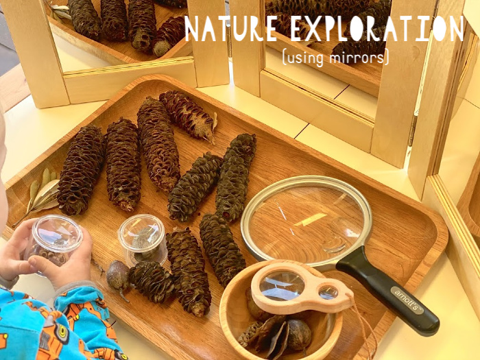 Nature exploration tray with mirrors at How we Montessori