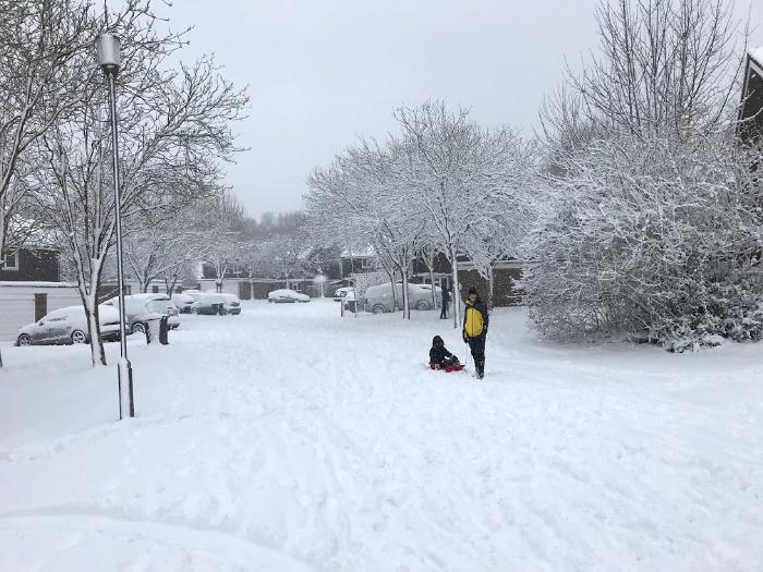 Snow day at How we Montessori Caspar and Otis UK