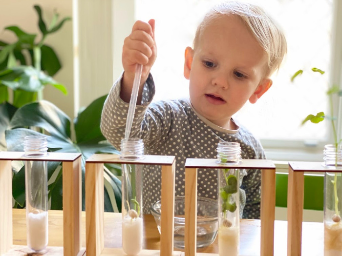 How we Montessori watering sprouts with pipette toddler