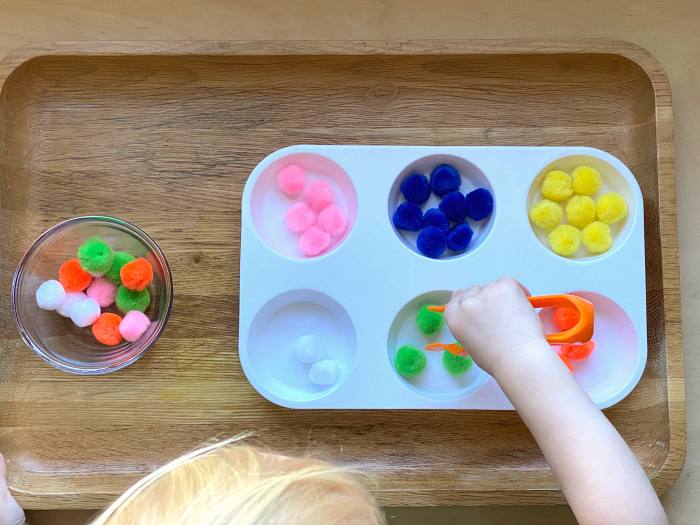Otto colour sorting with gator tweezers at How we Montessori