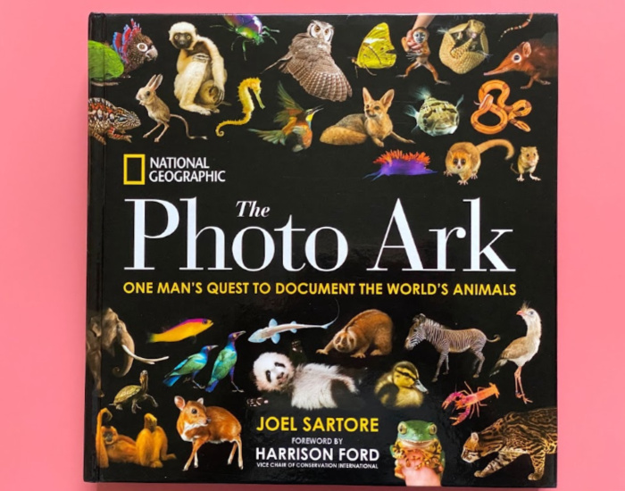 Photo Ark project at How we Montessori