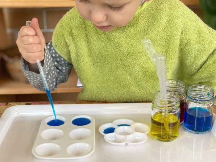 Montessori toddler twisty dropper pipette