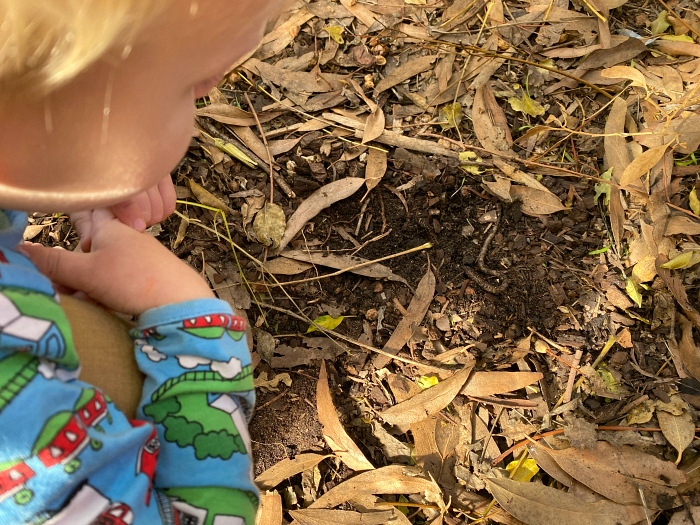 Otto finds earth worm at How we Montessori