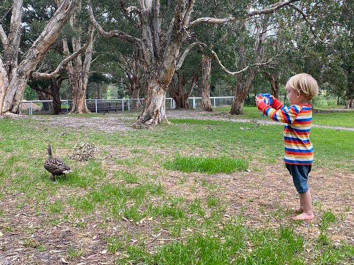 Otto taking photograph of ducks at How we Montessori kids camera