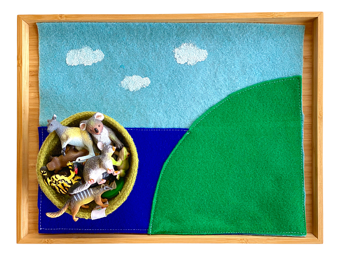 Land Air Water Animals at How we Montessori
