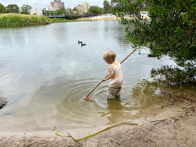 Pond dipping at three years at How we Montessori