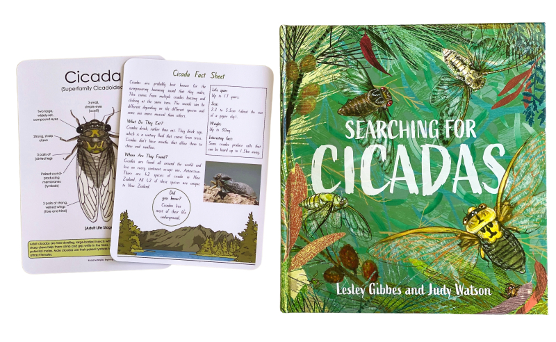 Cicada book and fact sheet at How we Montessori (1)