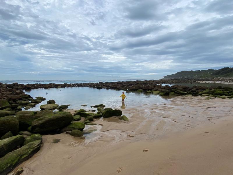 Nature's classroom at How we Montessori beach rockpools Sydney