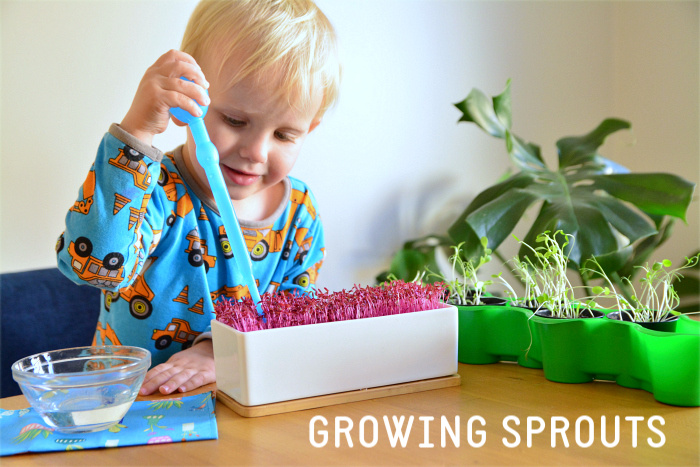 Otto watering sprouts at How we Montessori (1) (1)
