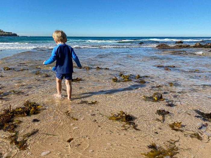 Otto exploring sea weed at Bondi Beach at How we Montessori