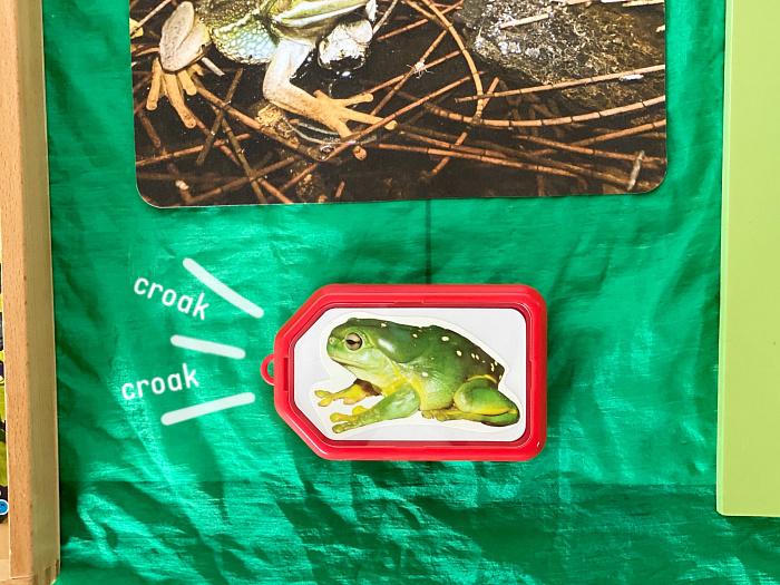 How we Montessori croak croak toddler sound recorder (1)