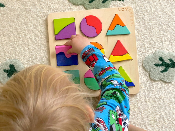 Part whole perception puzzle landforms by Lovevery at How we Montessori at two years toys