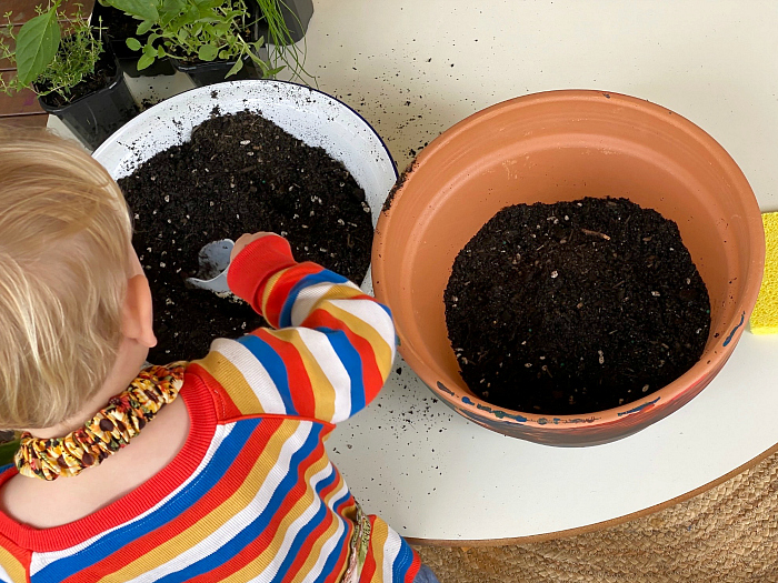 Otto transferrring potting mix at How we Montessori gardening with kids