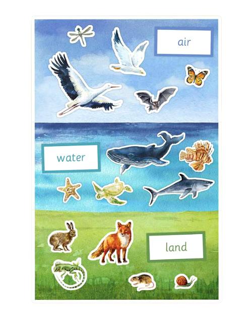 Studio Montessori Land Air Water