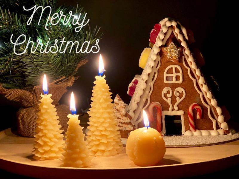 How we Montessori Merry Christmas 2020jpg (2)