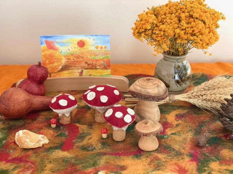 Steiner inspired Autumn seasonal mat  wet felting