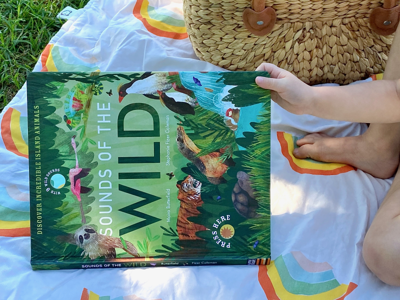Sounds of the Wild Children's Picture Sound Book at How we Montessori