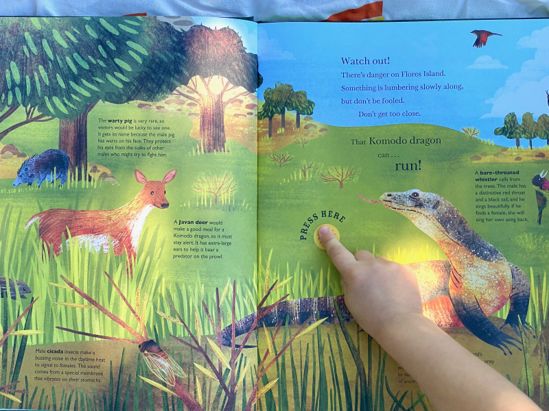 Sounds of the Wild Kids Book at How we Montessori