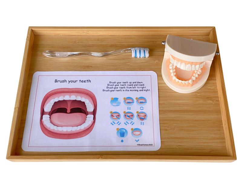 Montessori teeth brushing tray at how we Montessori (1)