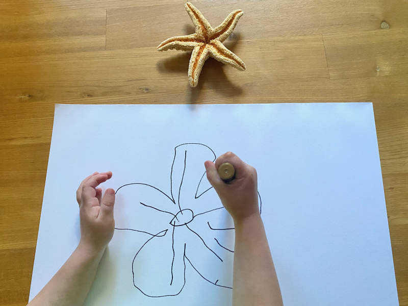 Dinosaur observational drawing at How we Montessori at three years old