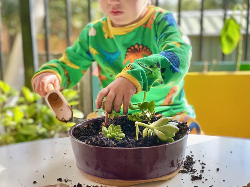 Gentle hands gardening with kids succulent pot at How we Montessori