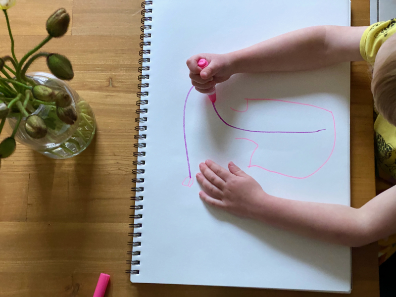 Observational drawing of flowers at three years old at How we Montessori