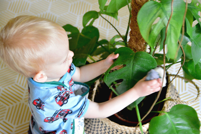 Leaf dusting at How we Montessori toddler