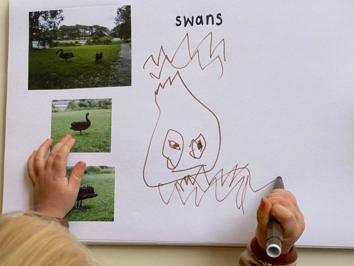 Exploring photography at How we Montessori nature journalling