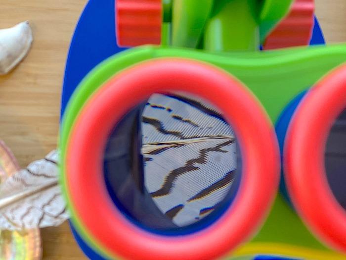 First children's microscope at How we Montessori