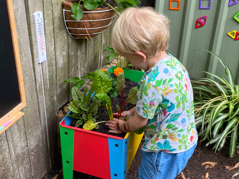 Otto planting silverbeet at How we Montessori activity