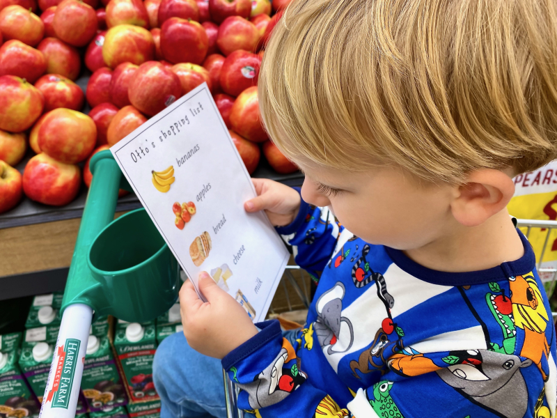 Visual shopping list at How we Montessori shopping with kids  toddler (1)