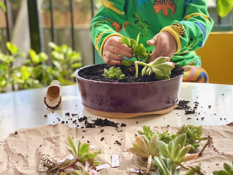 Gardening with kids at How we Montessori