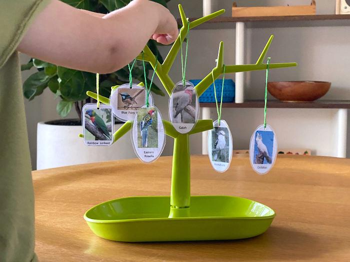 Montessori Language Tree at How we Montessori