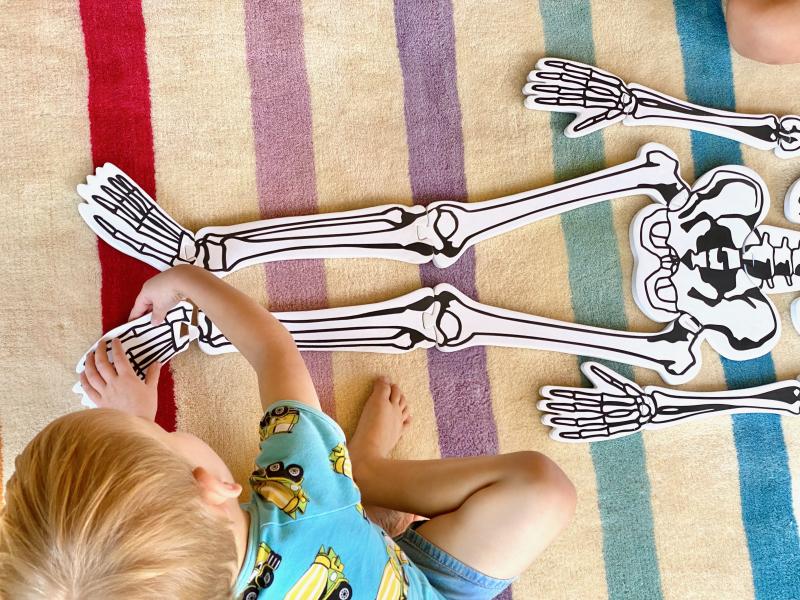 Skeleton puzzle at How we Montessori