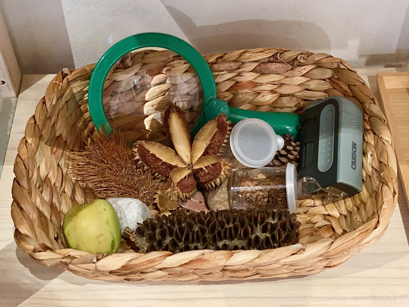 Montessori make over nature basket  seasonal basket  kids magnifying glass  pocker magnifyer