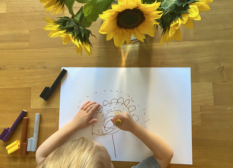 Observational drawings at How we Montessori sunflowers at three years