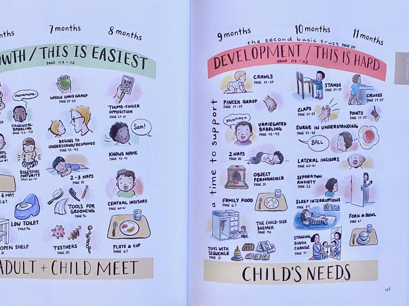 Babies build toddlers developmental time line (1)