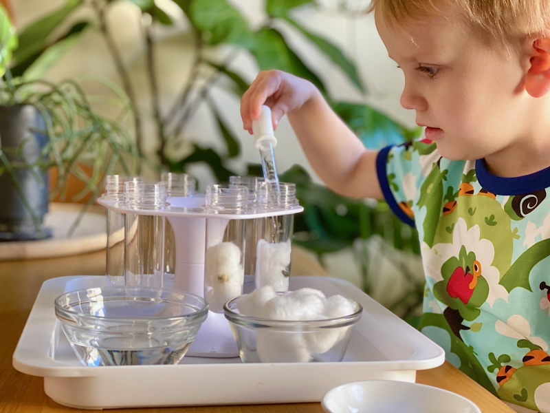 Planting seeds in the Lovevery Colour Liquid Lab at How we Montessori play kits