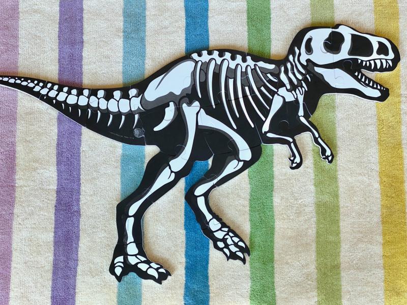 Dinosaur puzzle skeleton at How we Montessori